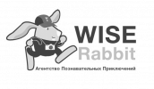 Wise Rabbit